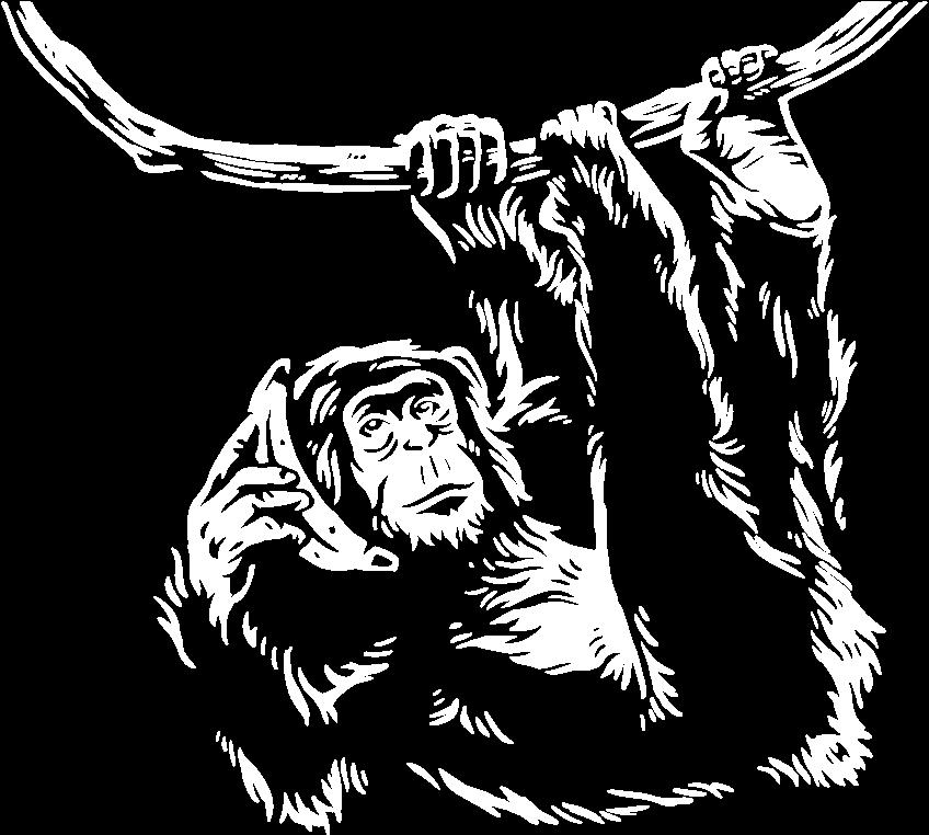free strategy call chimpanzee illustration