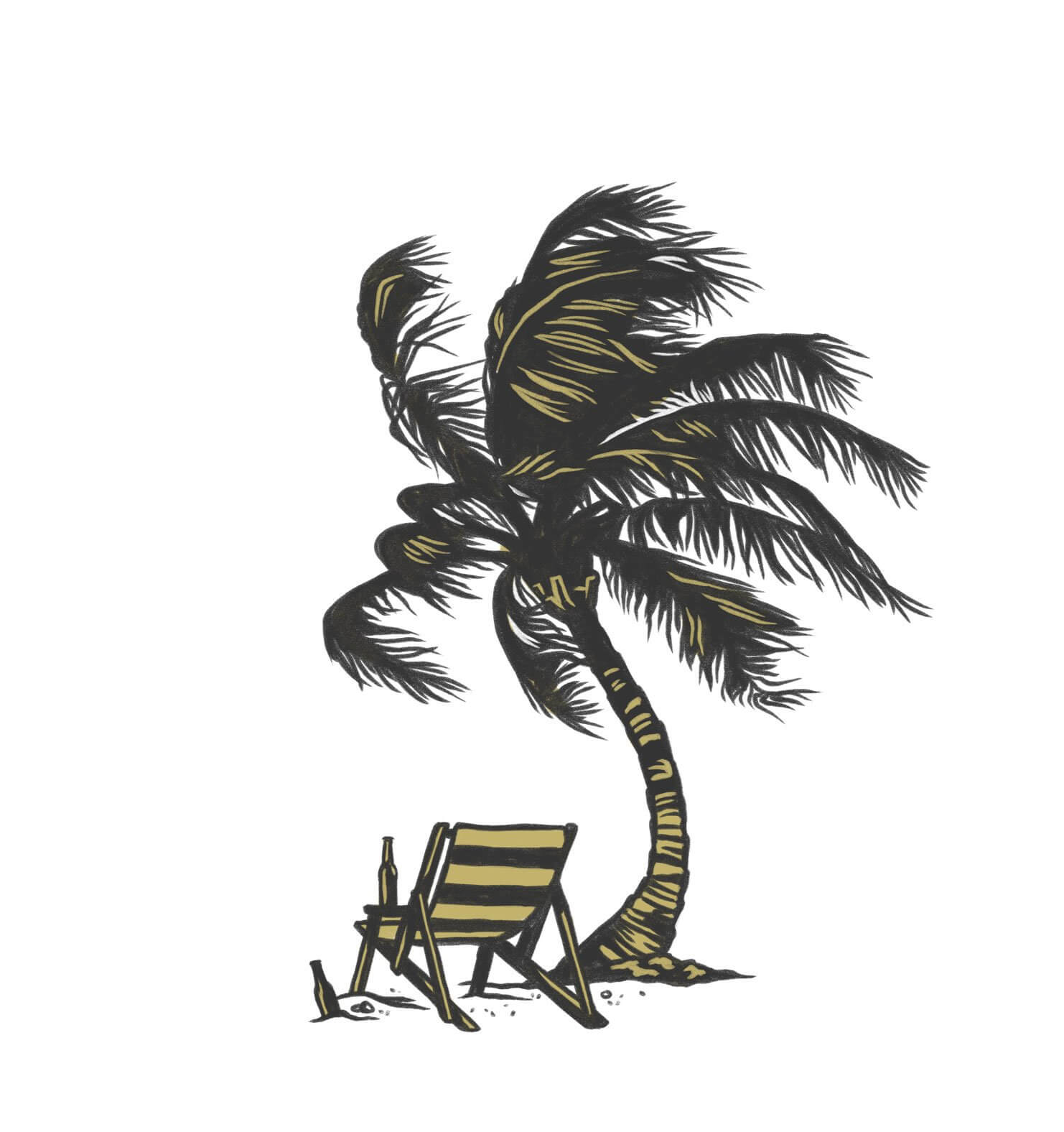 magic waters palm tree beach illustration
